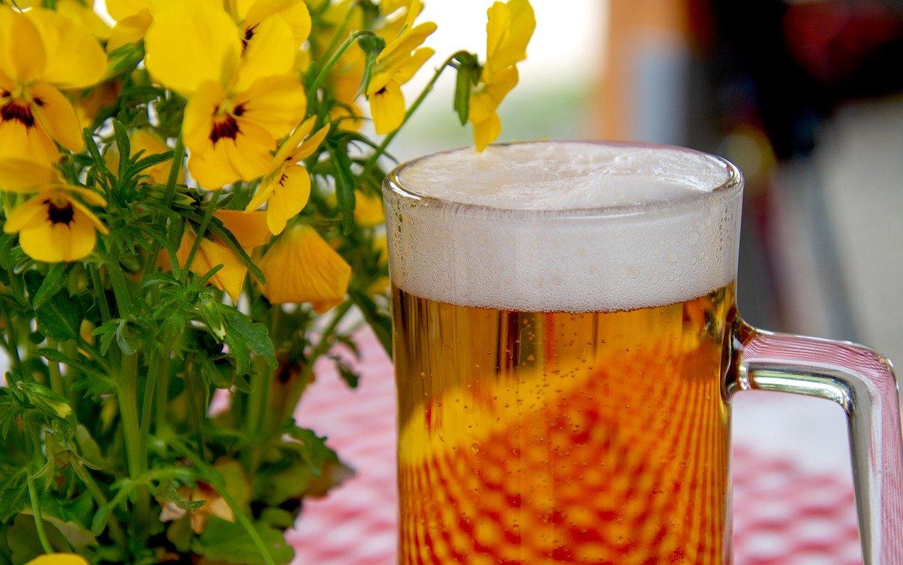 beer-3378136_1280